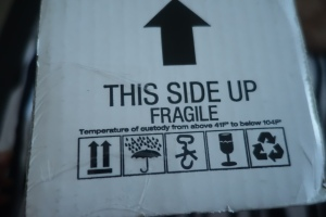 Customs, why you no understand what fragile means?